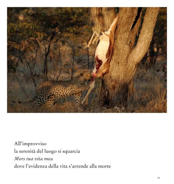 ALLEGATO 2 - The_River_of_Life_29