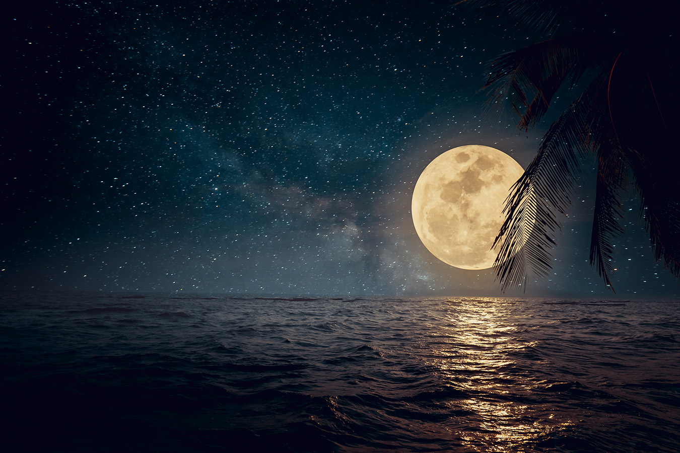 La Naturaleza: Luna / Mar | Laura Rosado