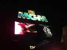 We stayed at the MGM Grand.