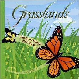 Grasslands: Fields of Green and Gold