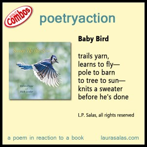 Poetryaction and Bookalikes for Sweep Up the Sun