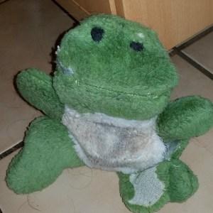 froggy-15wol