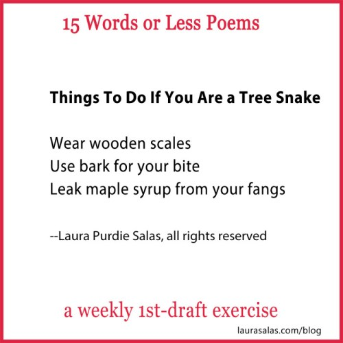 Things To Do If You Are a Tree Snake