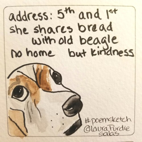 no home but kindness