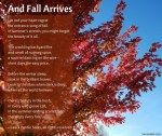 And Fall Arrives