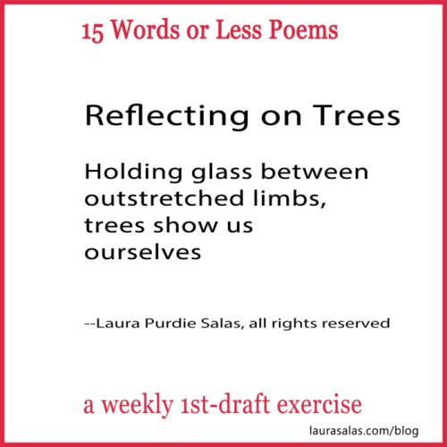 relecting on trees