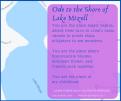 Ode to Lake Mizell