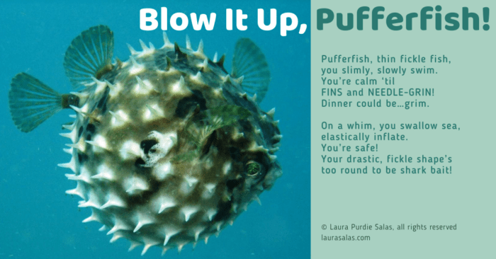 Blow It Up, Pufferfish!