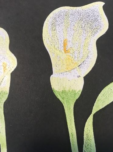 lily chalkboard technique colored