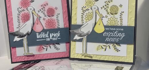 Precious delivery stork cards