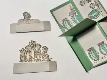 Meerkat pop up box inside