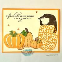 Pumpkin Patch Cat Card