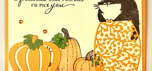 Pumpkin patch cat card stamped and diecut pretty pumpkins clever cats stampin up