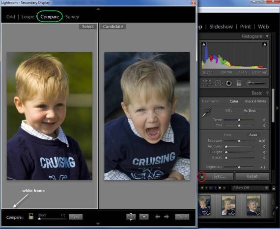 Using Lightroom Compare View to Develop Images Side by Side
