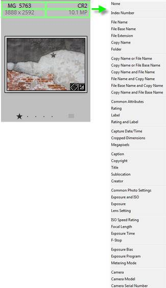 Change Lightroom grid photo information display