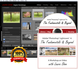 Lightroom 4: The Fundamentals & Beyond - Video Training