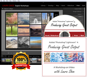 Lightroom 4: Producing Great Output - Video Training