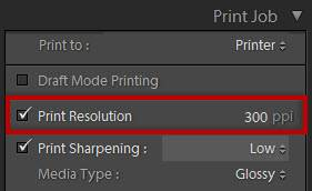 Lightroom print resolution