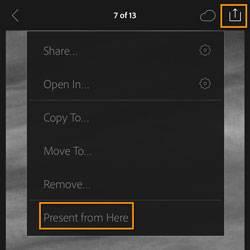 Lightroom Mobile Presentation Mode 2