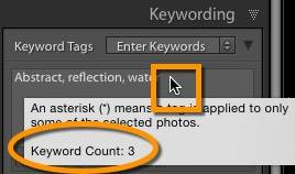 Hover over keywording box for keyword count
