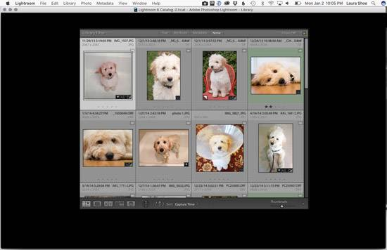 Lightroom's Library Module Panels Go Black