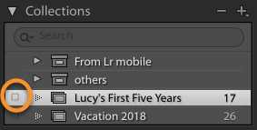 Sync Collection in Lightroom Classic