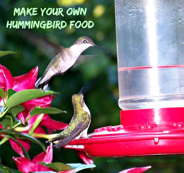 Make your own Hummingbird Food httpwww.lauraslittlehousetips.com