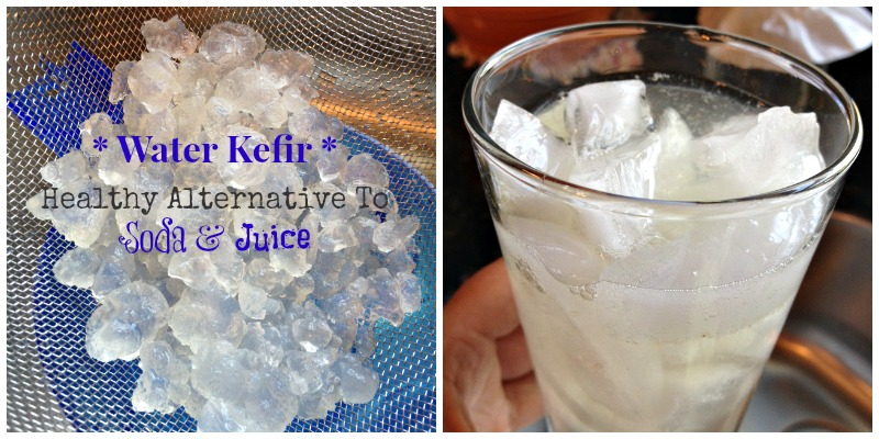 Water Kefir - Healthy Alternative To Soda And Juice