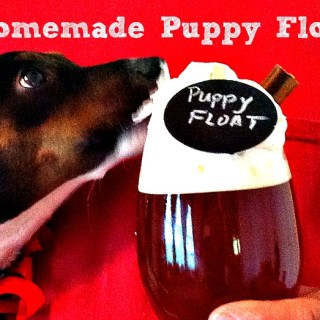 Homemade Puppy Float w/Pedigree Dentastix® #ShareFunshine #Ad