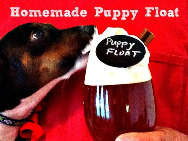 Homemade Puppy Float w/Pedigree Dentastix® #ShareFunshine #Ad 1