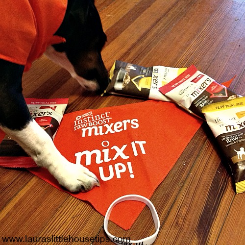 Finding a New Love: Instinct® Raw Boost® Mixers