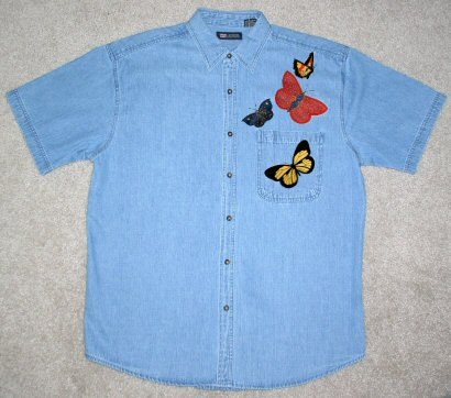 Butterflies Applique & My Chambry Shirt