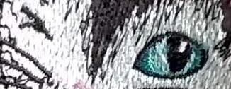 Diva Katz No.2 - The Eyes Have It