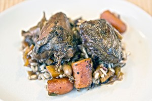 Stout braised dove