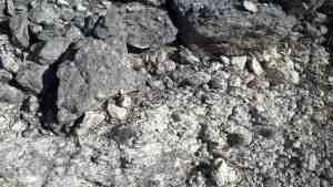 roadside geology and paleontology