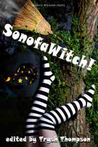 SonOfAWitch! anthology cover showing witch legs crashing into tree