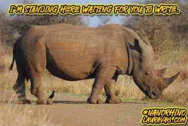Watching rhino: I'm standing here waiting for you to write.