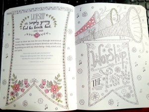 Tranquility: A Prayer and Reflection Coloring Journal