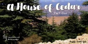 A House of Cedar (part one)