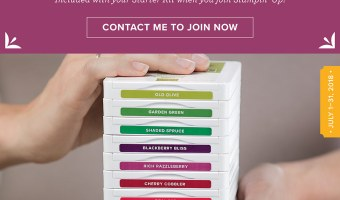 Join My Team with this Fabulous Ink Pad Promotion