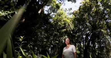 La UNLP sale al rescate del arbolado de la costa atlántica bonaerense