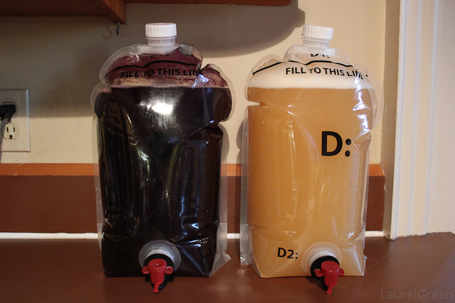a photo of some merlot and chardonnay fermenting in transparent bags