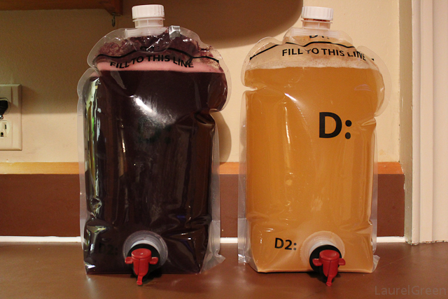 a photo of some merlot and some chardonnay fermenting next to each other
