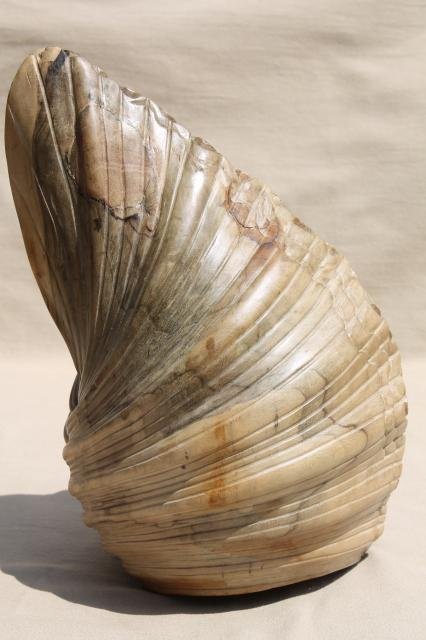 Natural Wood Carving Seashell Sculpture Large Hand Carved