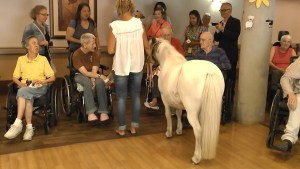 Barn Day at Laurel Place Seniors Care Home