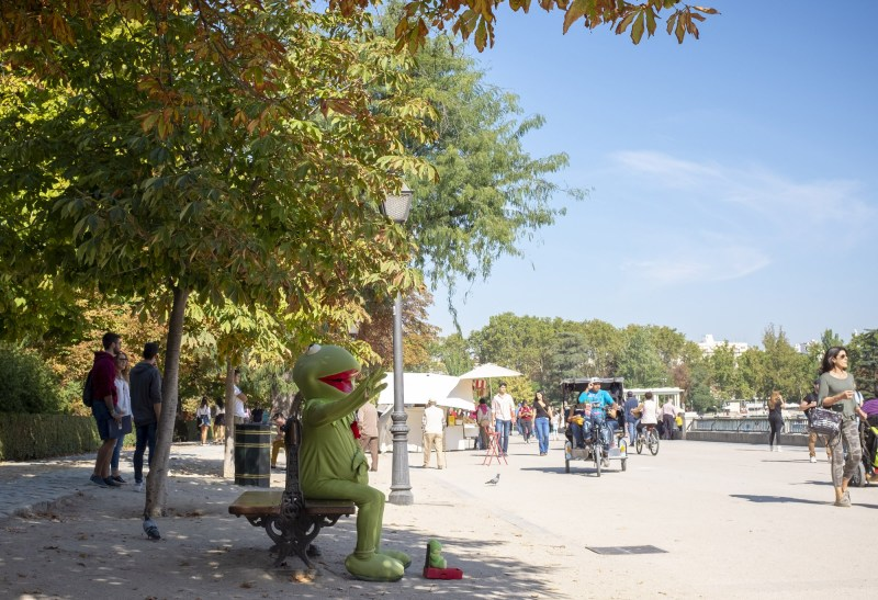 Man Kermit
