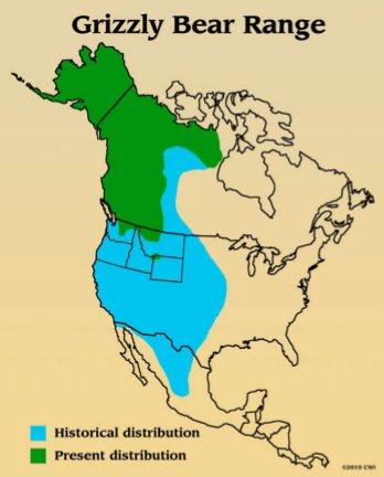 Historic and current range of grizzly bear