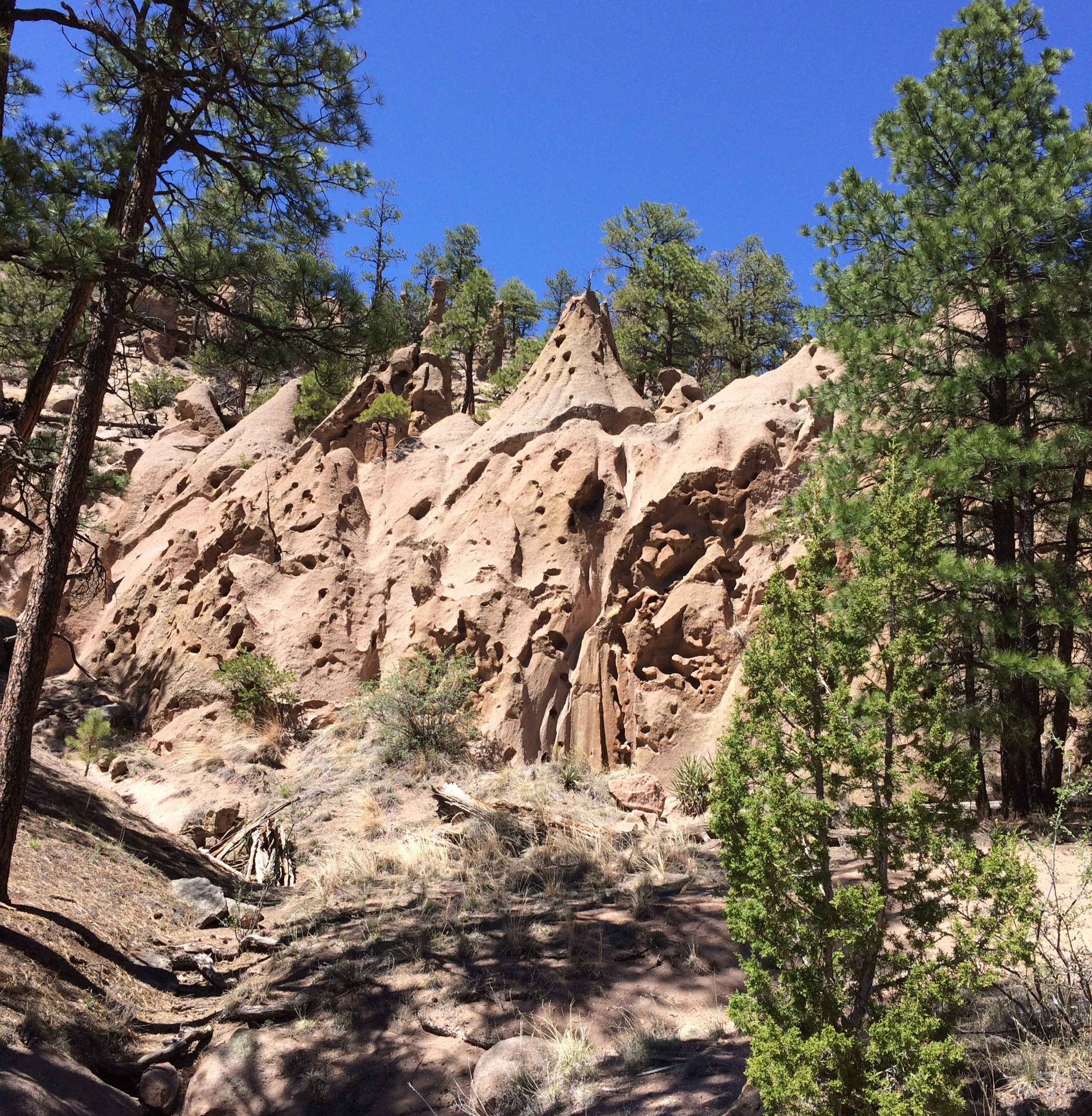 Approaching the Paliza Canyon Goblin Colony, Santa Fe National Forest. (Lauren Danner photo)