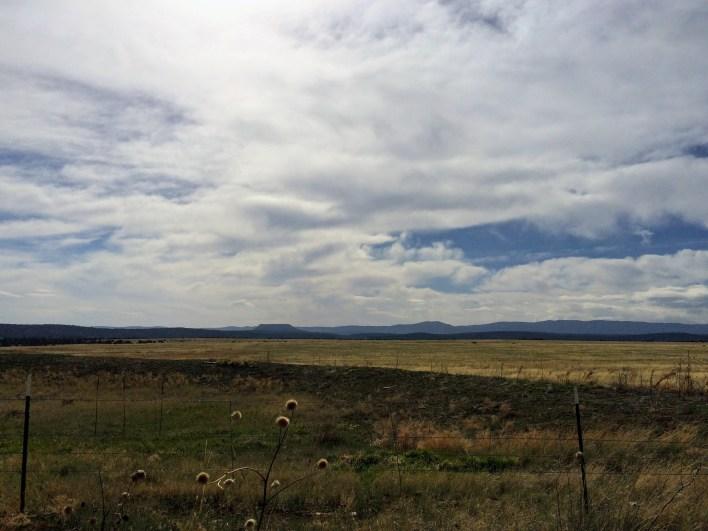 Meadows outside Las Vegas, NM