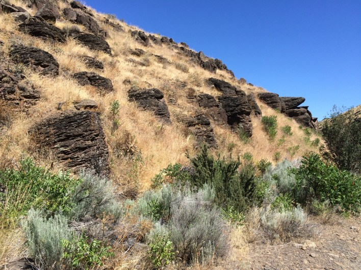 Ancient lava flows create horizontal bands on Cowiche Canyon's north side (Lauren Danner photo)